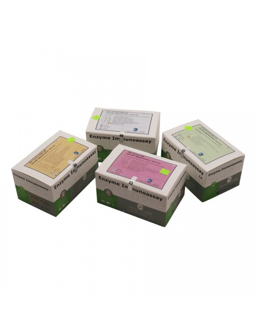 ANTI-HCV 480 TESTS